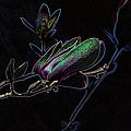 Neon Tulip Tree 5090 by Ericamaxine Price