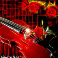 Neons Violin With Roses by Ruahan Van Staden