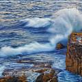 Neptune's Embrace by Ronn Orenstein
