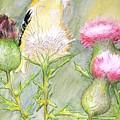 Nest Fluff by Debra Sandstrom