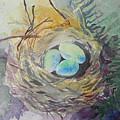 Nest In The Ferns by Lisa Schorr