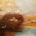 Nest by Snezana Bozic
