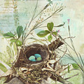 Nesting I by Mindy Sommers