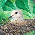 Nesting by Robin Monroe