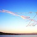 Net Fishing Sea Of Galilee by Thomas R Fletcher