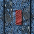 Networking 2 by Tim Allen