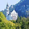 Neuschwanstein Castle 1 by Bernard Barcos