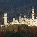 Neuschwanstein Castle by Andre Goncalves