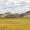 Nevada Beauty 2 by Jim Thompson