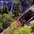 Nevada Falls Yosemite National Park by Alan Lenk