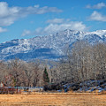 Nevada Ranch In Winter by Dianne Phelps