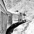 Nevada Southern Railway And Union Pacific 844 Engine by Toula Mavridou-Messer