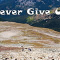 Never Give Up On Mount Yale Colorado by Steve Krull