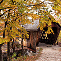 New England College No. 63 Covered Bridge  by Betty Pauwels