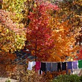 New England Color In October  by Gene Rouse