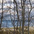 New England Massachusetts Beach  Scene by Keenpress
