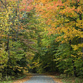 New England Road by Jessica Wakefield