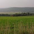 New England's Farmland by Nancie DeMellia
