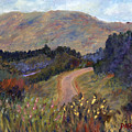 New Hampshire Road by Pamela Parsons
