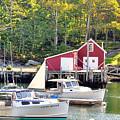 New Harbor by Scott Coleman