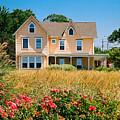 New Jersey Landscape by Steve Karol