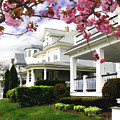 New Jersey Shore Spring by Steve Karol
