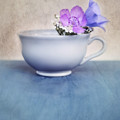 New Life For An Old Coffee Cup by Priska Wettstein