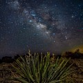 New Mexican Night by Tanner Williams