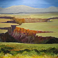 New Mexico Canyon by Barbara Moore