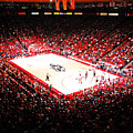 New Mexico Lobos University Arena by Replay Photos
