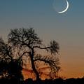 New Moon At Beaver Creek, Arizona, I by Dave Wilson