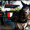 New Orleans Carriage Ride by Joan  Minchak