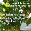 New Things Scripture by JerryAnn Berry
