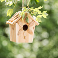 New Wooden Birdhouse Hanging On Tree Branch Outdoors  by Thomas Baker
