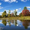 New York Autumn Landscape by Christina Rollo