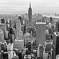 New York City by Anthony Sacco