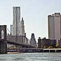 New York City by Madeline Ellis