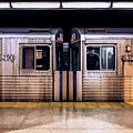 New York City Subway Cars by Christopher Arndt