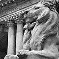 New York Public Library by Heidi Reyher