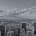 New York Skyline - View On Central Park - 2 by Christian Tuk