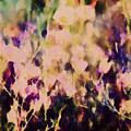New York Wildflowers Xiii by Tina Baxter