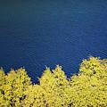 New Zealand Autumn by Doug Sturgess