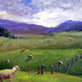 New Zealand Sheep Farm by Michelle Philip