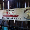 Newark Bisons by Jeff Roney