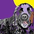 Newfie Bear by Su Humphrey