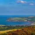 Newport Bay by Mark Llewellyn