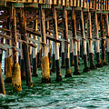 Newport Beach Pier Close Up by Mariola Bitner