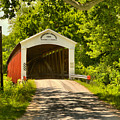 Newport Covered Bridge In The Forest by Adam Jewell