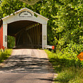Newport Covered Bridge Landscape by Adam Jewell
