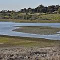 Newport Estuary Looking Across At Visitors Center  by Linda Brody